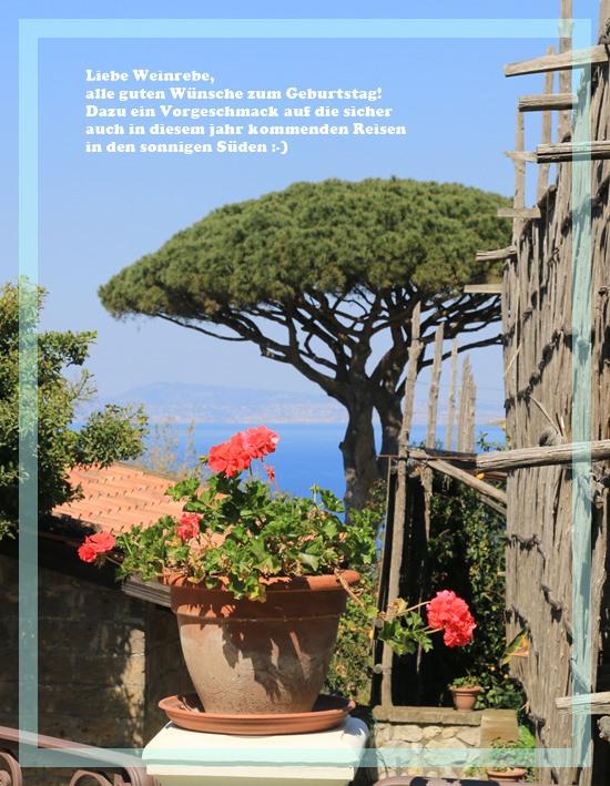 Gartentagebuch im April. - Page 6 - Mein schöner Garten Forum